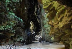 cueva-de-los-tayos-ecuador[1]